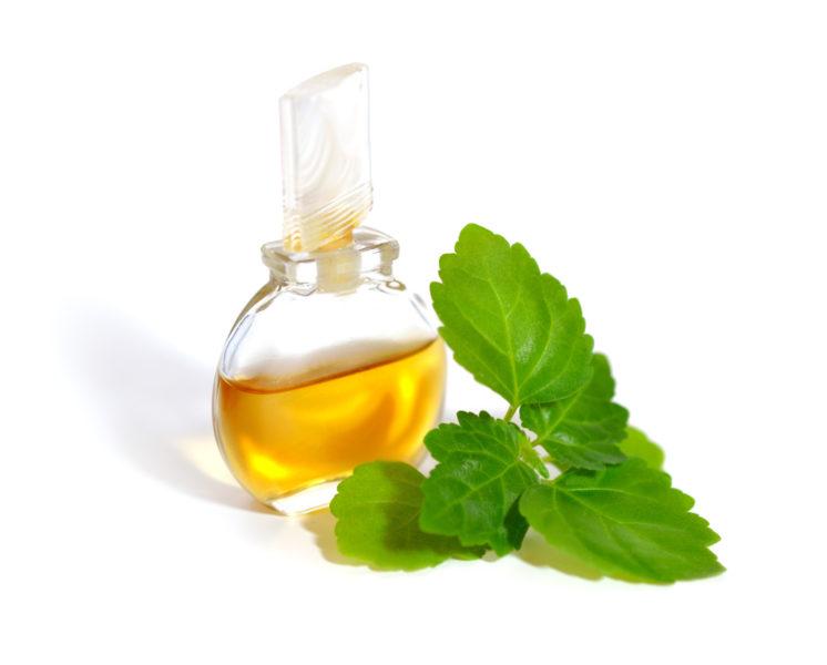 parfum-flakon-shutterstock_361698044